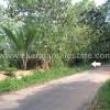 Palode Kochupanangode land plots sale Palode real estate properties trivandrum