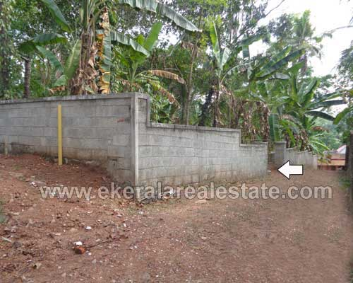 Thiruvananthapuram kerala real estate pathamkallu for Land for sale in kerala