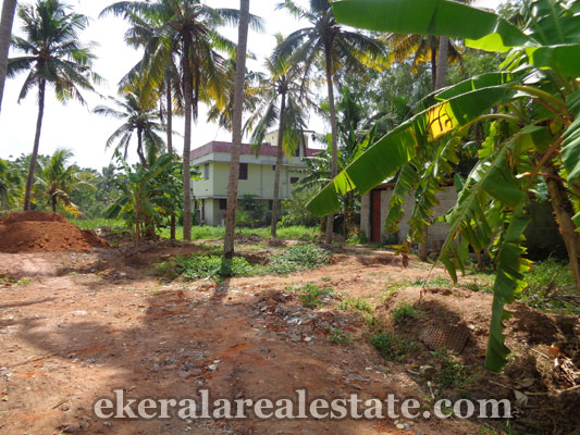 Kerala properties in trivandrum land sale at manacaud for Land for sale in kerala